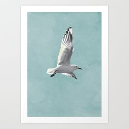 SEAGULL by Lo Lah Studio Art Print