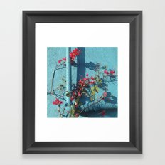 Echo Park Framed Art Print