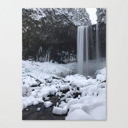Tamanawas Falls Canvas Print