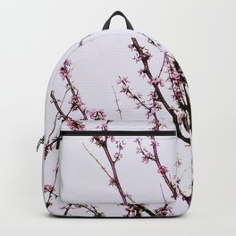 Overcast Spring II Backpack