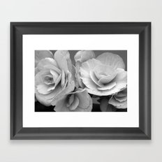 Begonia Symphony Framed Art Print