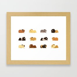 Guinea pigs Framed Art Print