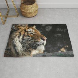 Portrait of a Siberian Tiger Rug