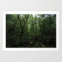 The Anaga Rural Park and forest of Tenerife,  Art Print