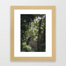 Hidden Jungle River Framed Art Print