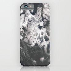 GIRAFFE PHOTOGRAPH - BLACK AND WHITE iPhone 6s Slim Case