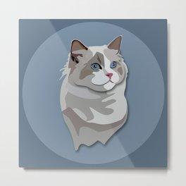 Ragdoll Kitty Cat Metal Print