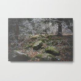 Winter stones Metal Print