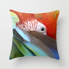 Feathered Friends II Throw Pillow