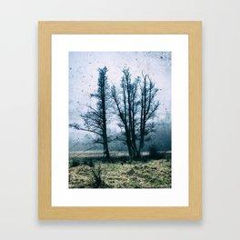 Bare Winter Trees Framed Art Print