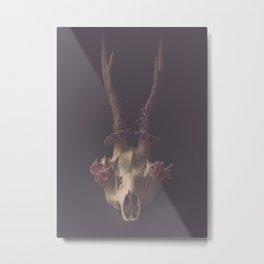 Deer skull still life Metal Print
