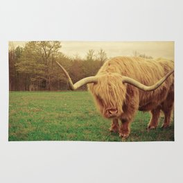 Scottish Highland Steer - regular version Rug