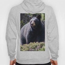 Mama Bear II Hoody