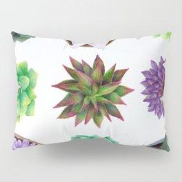 Succulent Friends Pillow Sham