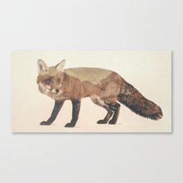 Veluwe: Fox Canvas Print