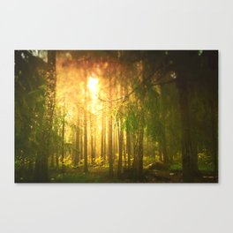 Our Forest Canvas Print
