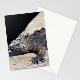 As cool as an iguana Stationery Cards
