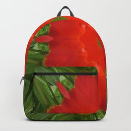 Concentric Nature Backpack
