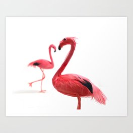 Pink Flamingos with Heart Art Print