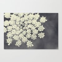 focus Canvas Prints featuring Black and White Queen Annes Lace by Erin Johnson
