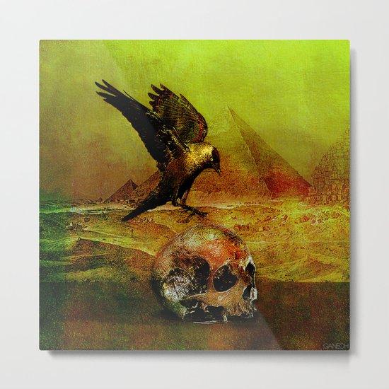 The crow of Egyptian plains Metal Print