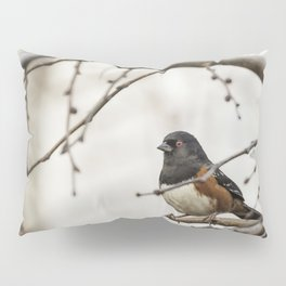 Spotted Towhee Pillow Sham
