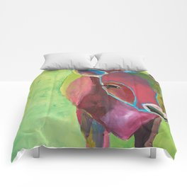 Miss Cornelia Comforters