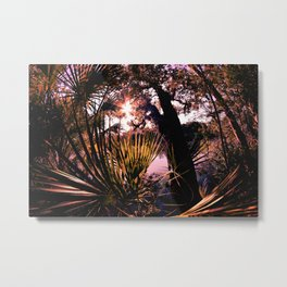 Sun cast in the canopies Metal Print