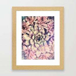 Sempervivum, Succulent Red  Mandala Framed Art Print