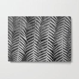 Plant leaf BW Metal Print