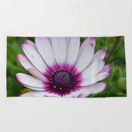 Pretty Purple Tips Beach Towel