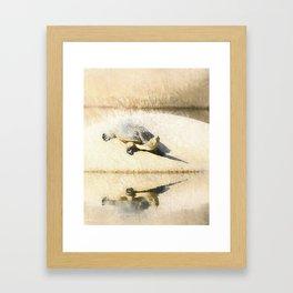 Hilaire's toadhead turtle Framed Art Print
