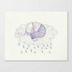 rainy cat Canvas Print