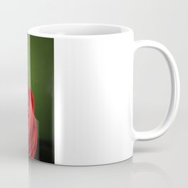 I liked them before they went mainstream Coffee Mug