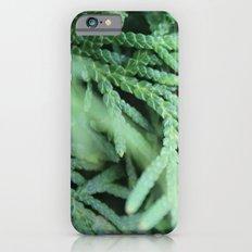 green Slim Case iPhone 6s