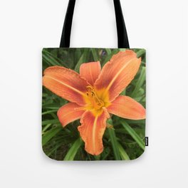 Hemerocallis Day Lily Tote Bag
