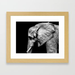 Elephant Portrait BW Framed Art Print