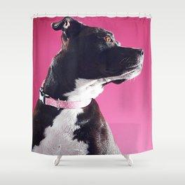 Super Pets Series 1 - Super Lucy 2 Shower Curtain