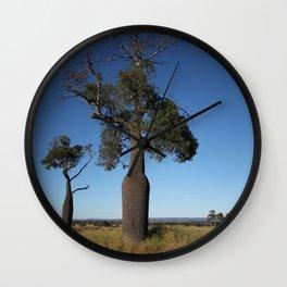 Queensland Australia Bottle Tree... the shape of a beer bottle Wall Clock