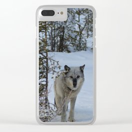 Lone wolf in the snow Clear iPhone Case