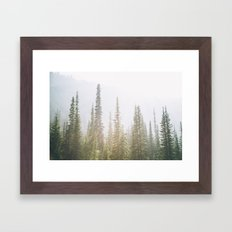 Forest XXVII Framed Art Print