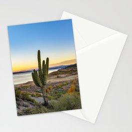 Cactus United States Stationery Cards