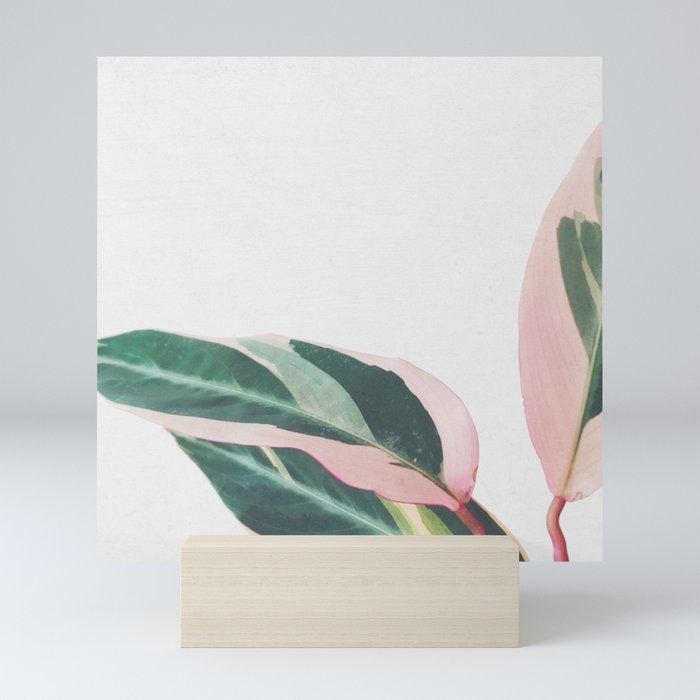 Pink Leaves II Mini Art Print