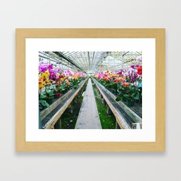Orchid Nursery Framed Art Print