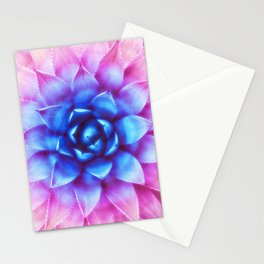 Agave Sunset Succulent Stationery Cards