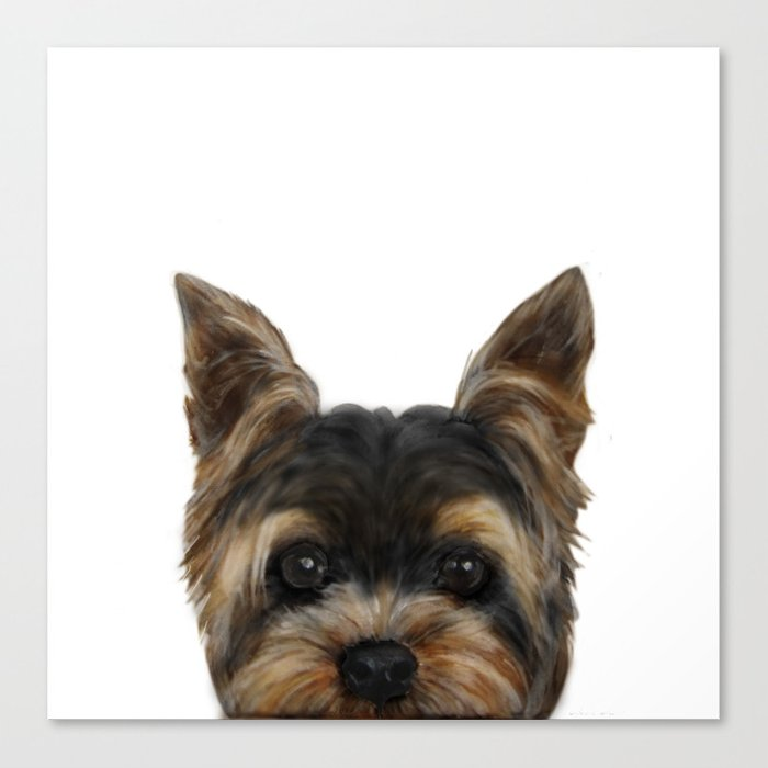 Yorkshire Terrier Mix Colordog Illustration Original Painting Print