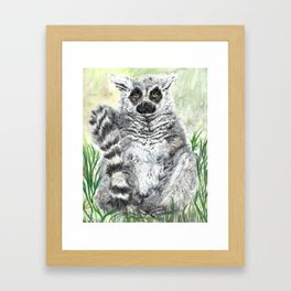 Ring-Tailed Lemur - cute animal, nature, lemur, eyeroll, zero given, not impressed, animals Framed Art Print