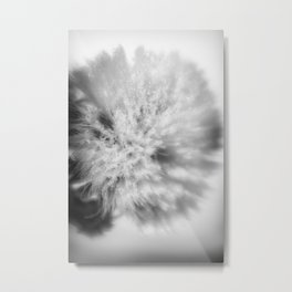 Sign of Winter a sow thistle weed covered in frost Metal Print