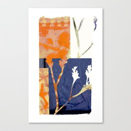 botanical collage 01 Canvas Print