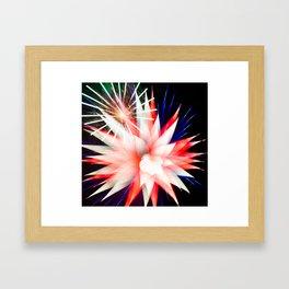 Geometric Firework 8 Framed Art Print